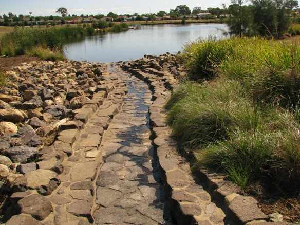 An example of constructed wetlands near Canberra, ACT, Australia