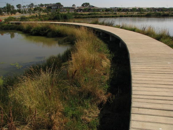 An example of constructed wetlands associated with new urban developments in Canberra