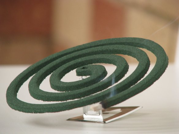 How to prevent dengue during monsoons use mosquito coil