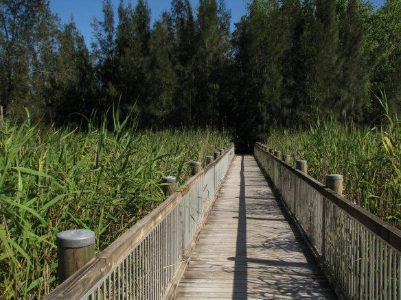 wetlandswalk