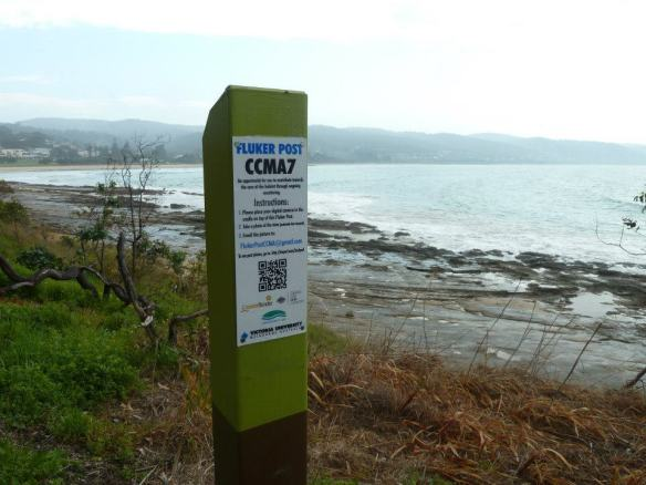 An example of a newly installed Fluker Post ready to help track environmental change (Source: The Fluker Post Project)