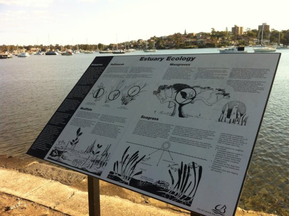 Educational signage of this nature are common place around wetlands in Sydney, could the inclusion of some guidelines for social sharing images help track mangrove incursion into shoreline habitats?