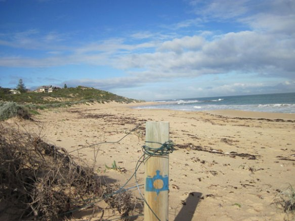 An example of the spray-painted blue camera on a beachside post inviting members of teh community to take and share a photo of Florida Beach (Source City of Mandurah)
