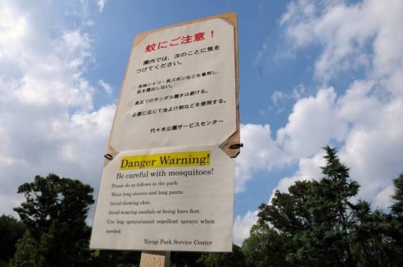 dengue_japantimes