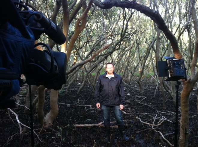 Getting ready for a live cross to Weekend Today (Channel 9) but what you cannot see in this shot is the hundreds of mosquitoes that were swarming around me, standing in the middle of the mangroves for 20min getting ready for the segment attracted plenty of mozzie attention!