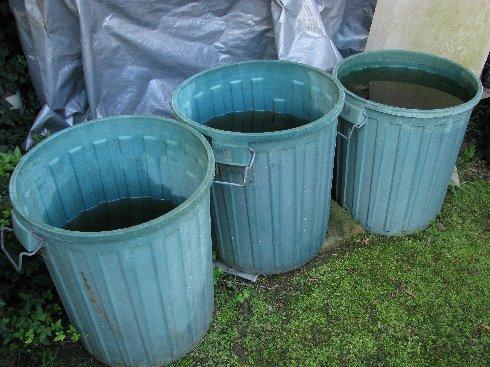 Webb_bucketsofrainwater