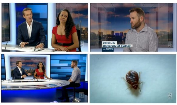 ABC24_BedbUgs_Lilly_17April2016